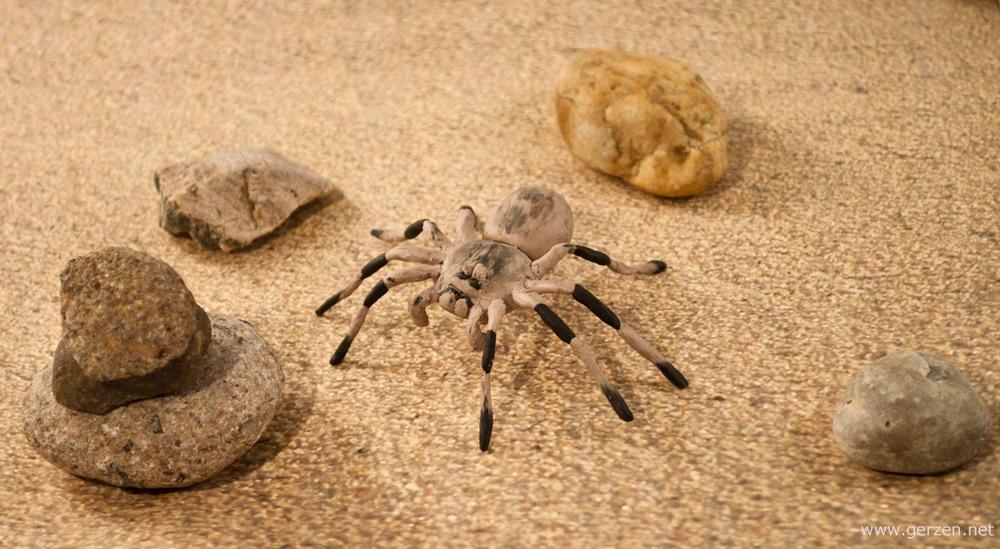 Die Spinne aus draht und knete. Spider made with clay and wire.