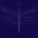 Glowing dragon fly in night sky