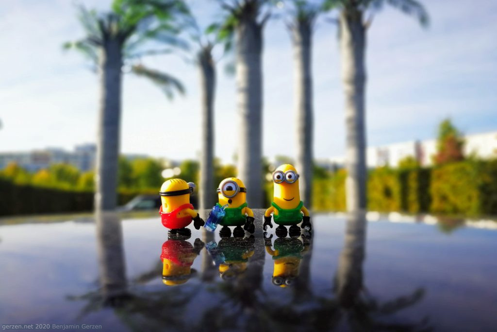 Minions in front of palms